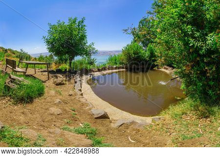 View Of A Wading Pool Of Ein Shoko (ein A-tina, Fig Spring), With The Sea Of Galilee In The Backgrou