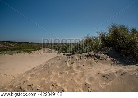Den Helder, The Netherlands, May 30, 2021. Dunes Near The Seaside Of Den Helder, The Netherlands. .