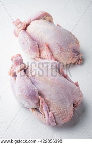 Raw Organic Uncooked Whole Chicken Meat, On White Background