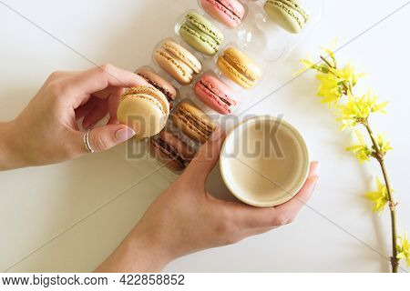 Female Hands Are Holding A Cup Of Coffee With Macarons. White Backgrounds With Branches Of Forsythia