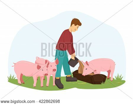 A Young Man Or Boy Farmer Feeds The Pigs. The Guy Takes Care Of Pigs, Piglets. A Farmer Stands On A
