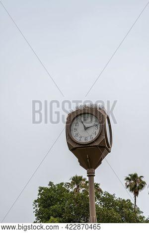 Santa Barbara, Ca, Usa - June 2, 2021: City College Facilities. Campus Clock On Pole With Bird Chasi