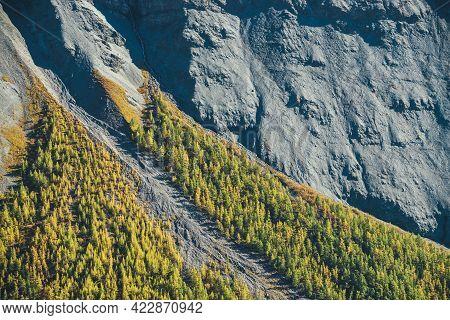 Wonderful Alpine Landscape With Orange Autumn Forest On Foot Of Rocky Mountain In Sunshine. Motley M