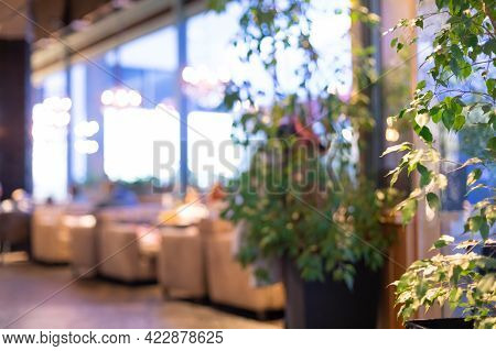 Blurred Background With Restaurant Interior. Green Plants, Blurred Lamps. Nobody. Copyspace