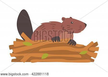 Beaver Gnawing Log, Brown Rodent Wild Mammal Animal Cartoon Vector Illustration