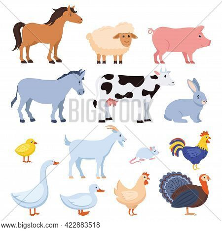 Farm Animals Set Isolated. Horse, Cow, Goat, Sheep, Pig, Rabbit, Chicken, Rooster, Duck Goose Chick