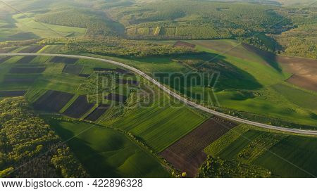 Aerial Drone View Flight Over Forest And Asphalt Road In Sunset Soft Light. Cinematic Drone Shot Fly