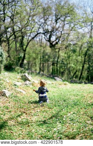 Little Girl Is Kneeling On A Green Lawn Among The Trees. Back View