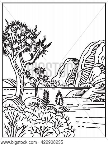 Mono Line Illustration Of The Rugged Rock Formations And Stark Desert Landscapes In Joshua Tree Nati
