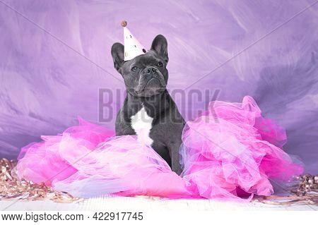 French Bulldog Dog Wearing Party Hat And Pink Tutu Skirt