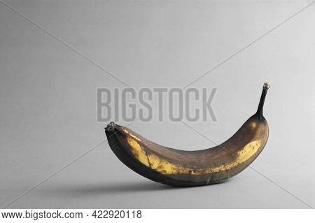 A Rotten Banana On Grey Background With Empty Copy Space For Text