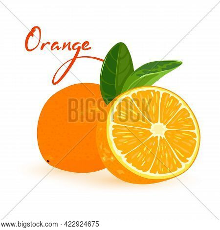 Yummy Citrus Fruit In Orange Peel, Sour And Aromatic. Vector Delicious Farm Product, Vitaminized And