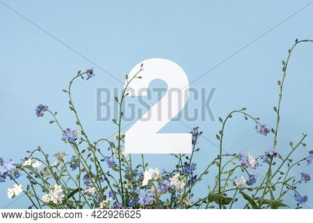 Number Two Among Blue Flowers On Blue Background. Birthday, Anniversary, Jubilee Concept. For Invita
