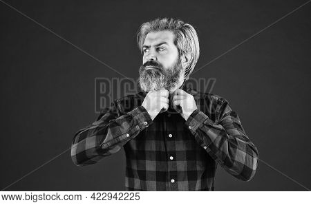 Bearded Man Dyed Blonde Hair. Hair And Beard Care. Barbershop And Hairdresser. Confident And Handsom