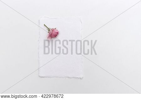Feminine Wedding Still Life Composition. Mock-up Scene With Blank Paper Card And Pink Rose. Flat Lay