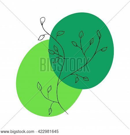 Sketch Of Branches And Abstract Geometric Shapes. Hand Drawn Vector Illustration