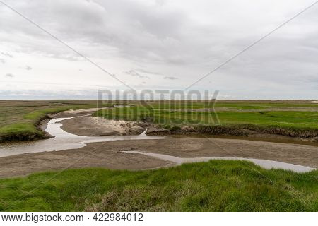Saltmarsh Landscape With Inlets And Green Reeds And Grasses On The German Wadden Sea Coast