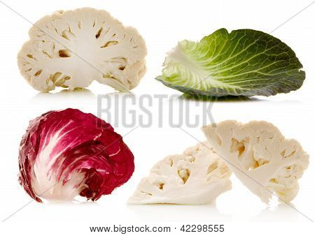 Cabbages On White
