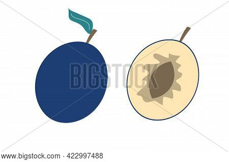 A Whole Plum And A Piece Of Plum On An Isolated White Background. Flat Vector Illustration. The Frui