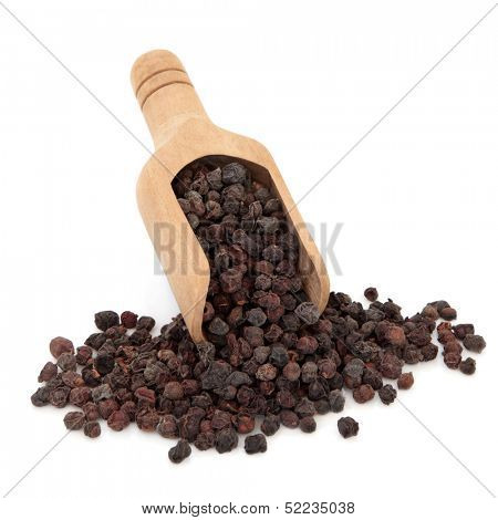 Schisandra berries used in chinese herbal medicine in a wooden scoop over white background. Wu wei zi.
