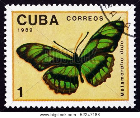 Postage Stamp Cuba 1989 Dido Longwing, Butterfly
