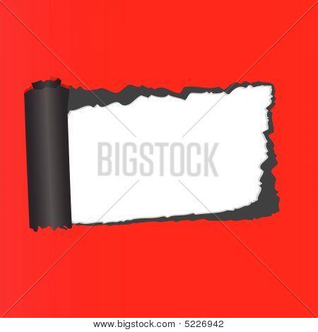 Structure Of Broken Off Paper. Vector Illustration