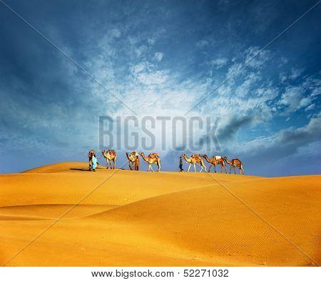 Camels travel through sand of desert dunes. Adventure journey summer landscape poster