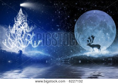 Blue Tree In Space With Water Reflection
