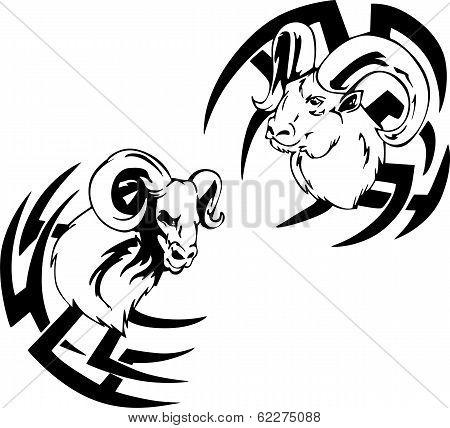 Argali Head Tattoos