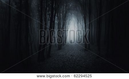 Man silhouette on path in a dark creepy surreal forest with fog at night