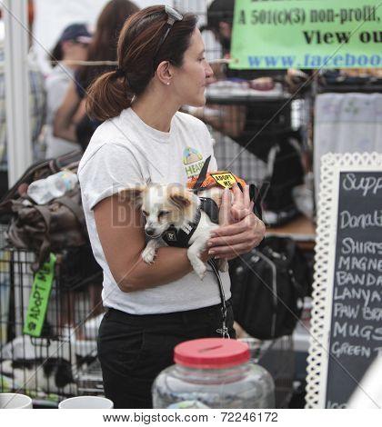 Volunteer with small adoptable cutie