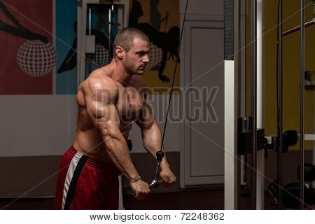 Young Bodybuilder Doing Heavy Weight Exercise For Triceps poster