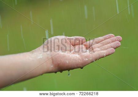 Hand Under A Rain