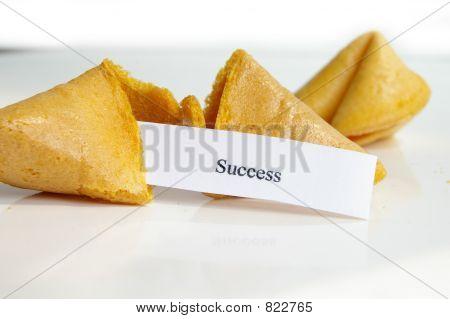success cookie