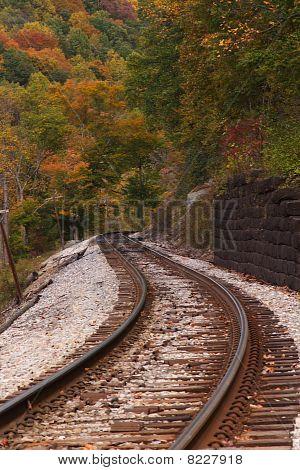 Fall RR Track Scenic