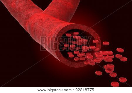 Blood Vessel With Bloodcells
