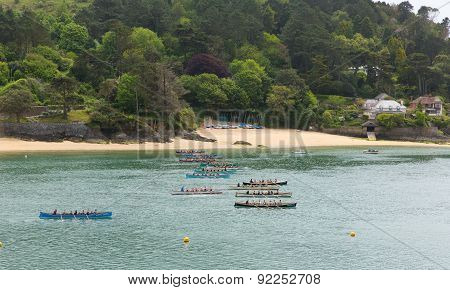Pilot gig boat racing rowing event at Salcombe Devon England UK on 31st May 2015
