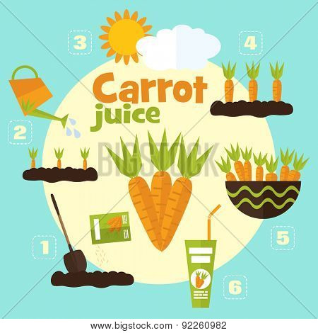 Vector garden illustration in flat style. Planting carrots, harvesting, processing carrots into juice.