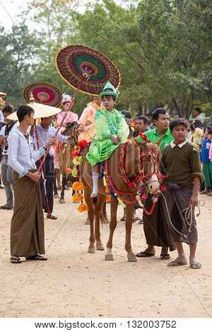 BAGAN MYANMAR - JANUARY 21 2016: Decorated horse buffalo and local people who participated in the donation channeled ceremony Shinbyu marking the samanera ordination of a boy under the age of 20