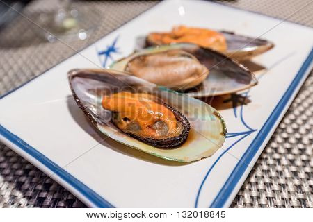 Newzealand mussel teppanyaki on white dish (Japanese food)