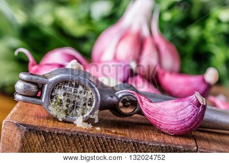 Garlic. Fresh garlic. Red garlic. Garlic press. Violet garlic.Garlic background. garlic bulbs.