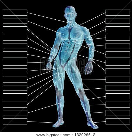 3D illustration of a concept or conceptual 3D male or human anatomy, a man with muscles and textbox isolated on black background