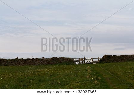 View Of A Gate On The Coastal Path In Cornwall