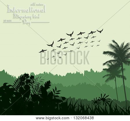 Vector illustration of Exotic tropical background beautiful with flying birds for Birds migratory day