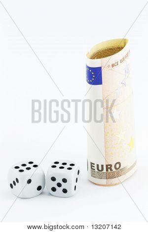 Euro -- An Economic Gamble