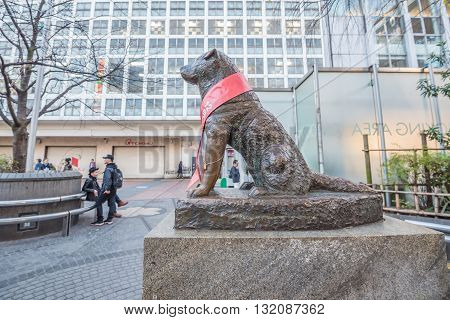 Tokyo Japan - November 20 2015: Unidentified people at Bronze statue of Hachiko at Shibuya Station. A dog is remembered for his remarkable loyalty to his owner which continued for many years Tokyo Japan.