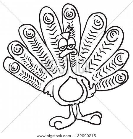 black and white peacock cartoon illustration