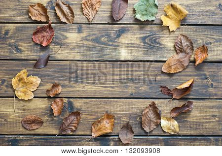 Dry autumn leaves making a frame on wooden background. Top view.