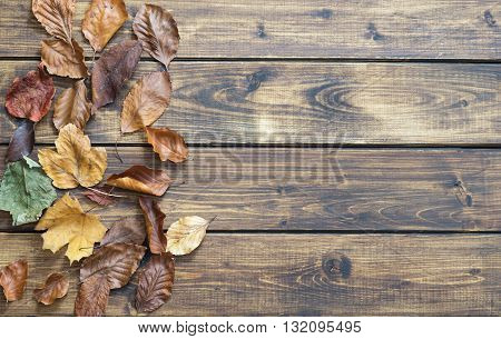 Dry autumn leaves make a left border on wooden background