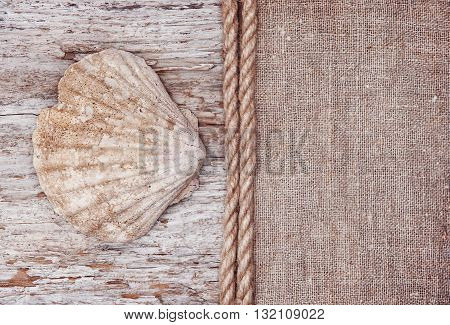 Grunge Background With Big Seashell, Rope On Sackcloth